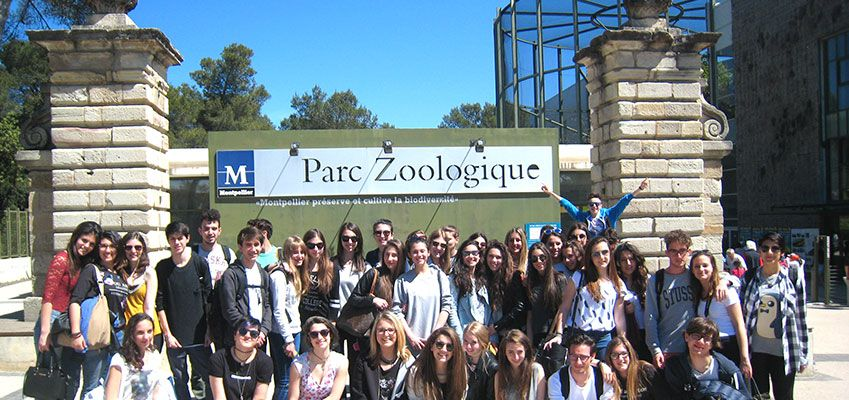 French Vocabulary You can learn by visiting a Zoo in France