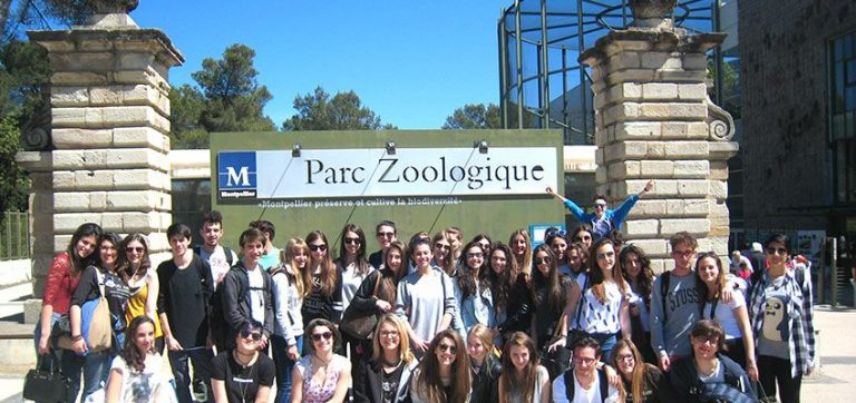 Le vocabulaire français que vous pouvez apprendre en visitant un zoo en France