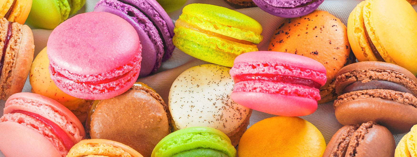 Macaron workshop visit with a tasting session