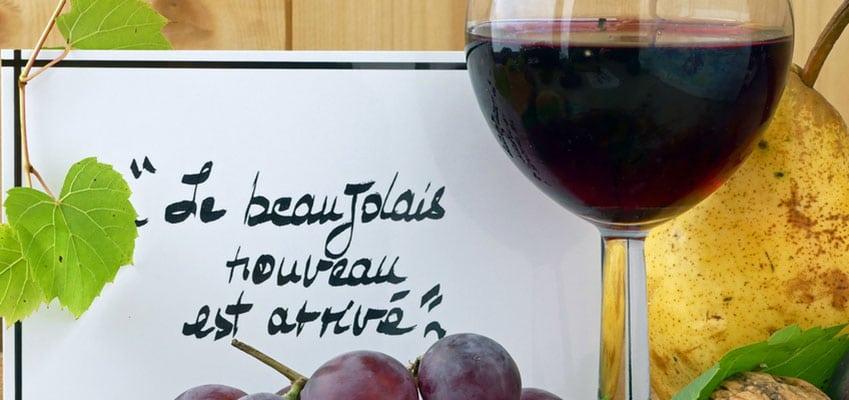 Dégustation de Vins du Beaujolais à l'école de français ILA